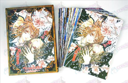 Vampire Knight Accessori Cartoline + scheda 2