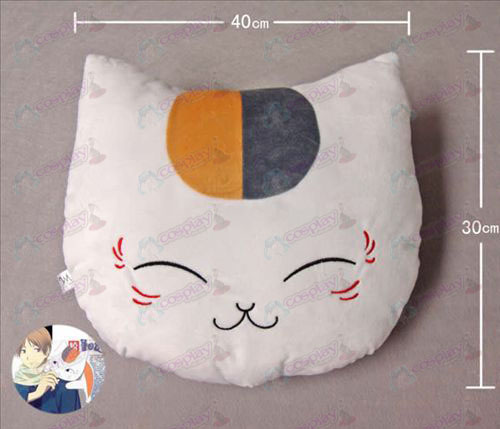 Cat insegnante Pillow